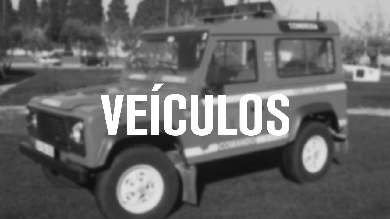 veiculos_capa8