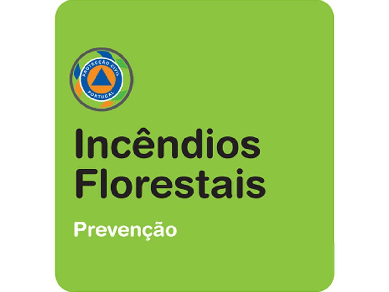 incendios-florestais-prevencao