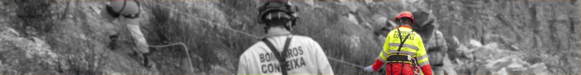 back_01_d